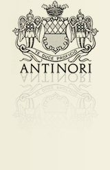 Antinori online at WeinBaule.de | The home of wine